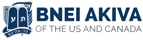 Bnei Akiva of North America Logo